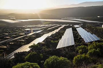 Corporate Renewable Energy Procurement Survey Insights