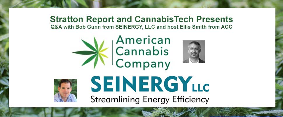 Insights on Cannabis Energy Rebates