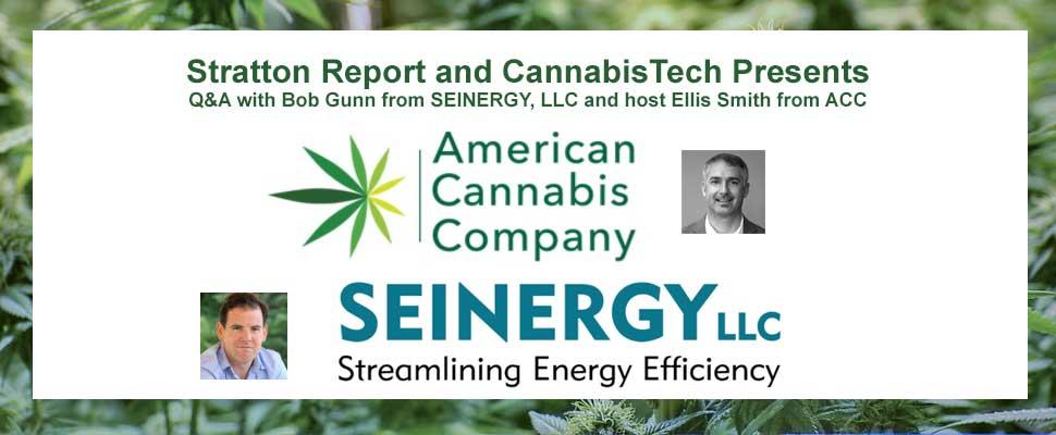 Insights on Cannabis Energy Rebates